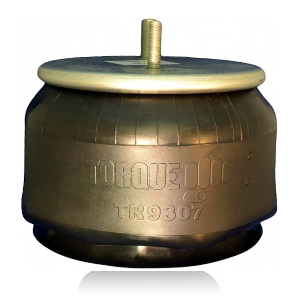 firestone-w01-358-9307-air-bag